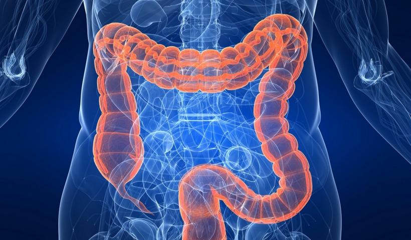 remedios caseros para limpiar el colon1