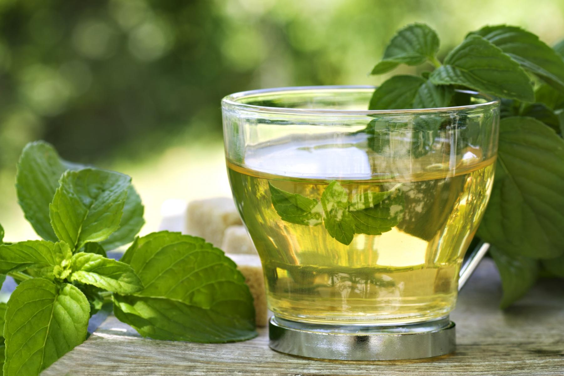 Top 10 propiedades y beneficios del te verde para la salud for Inmobiliaria popular