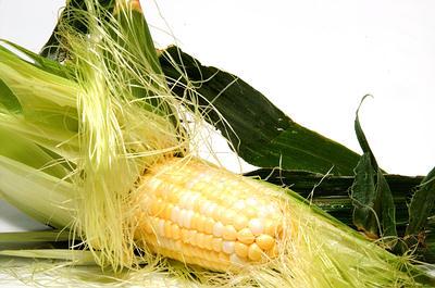 dieta para bajar el acido urico en sangre alimentos malos para acido urico alto el ginseng aumenta el acido urico