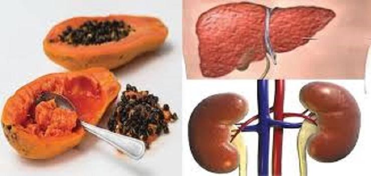 Cómo desintoxicar el hígado y los riñones