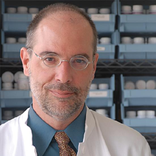 El Dr. Peter J. D'Adamo