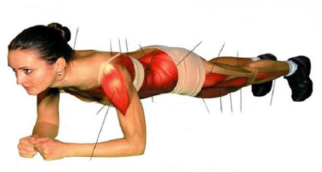 ejercicio-de-la-plancha-para-perder-la-barriga