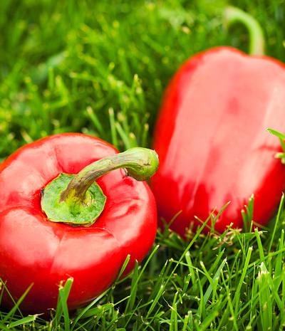 pimiento-rojo1
